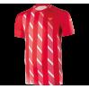 Футболка VICTOR Denmark RED 6599